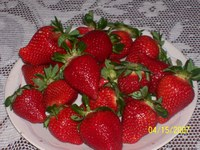 Plate_of_strawberries